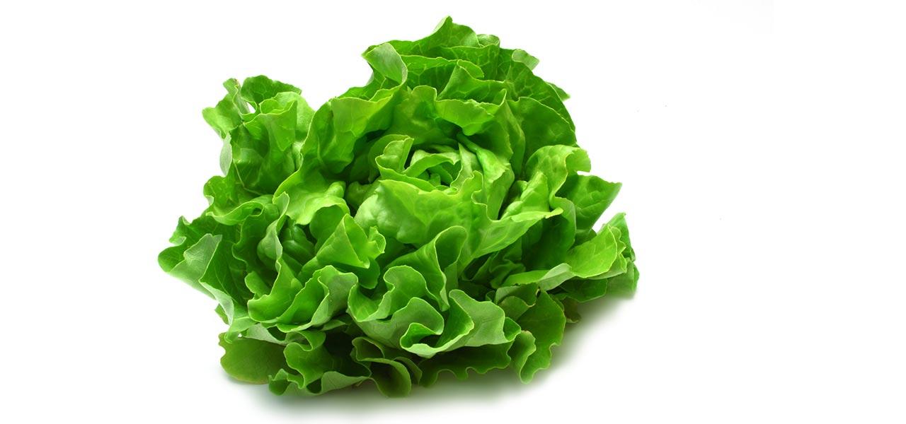 Salata Image 2